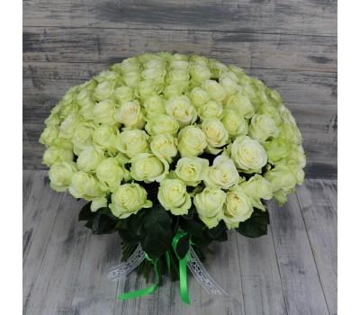 Белые розы  с доставкой в Лабинске и в Лабинском районе