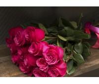 Голландская роза розовая